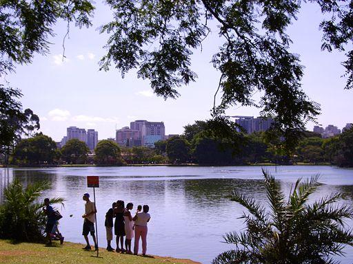 A Lake in Ibirapuera Park, São Paulo